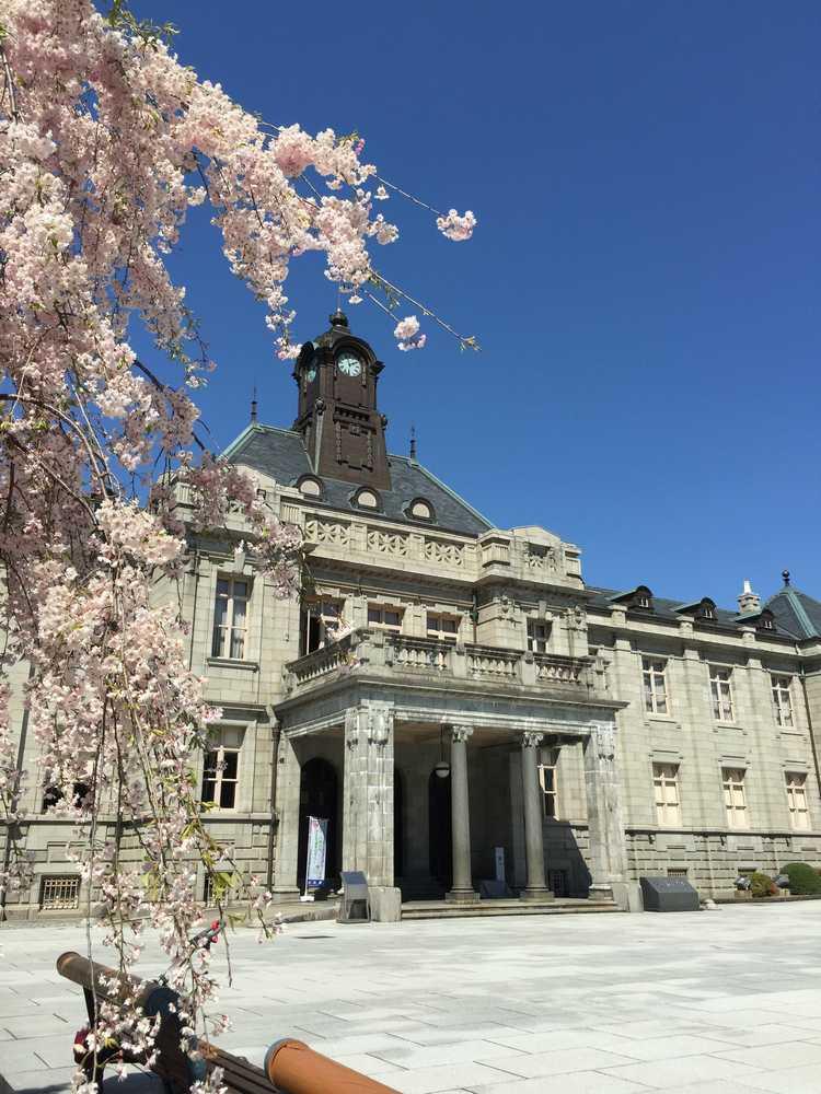 文翔館と枝垂れ桜画像