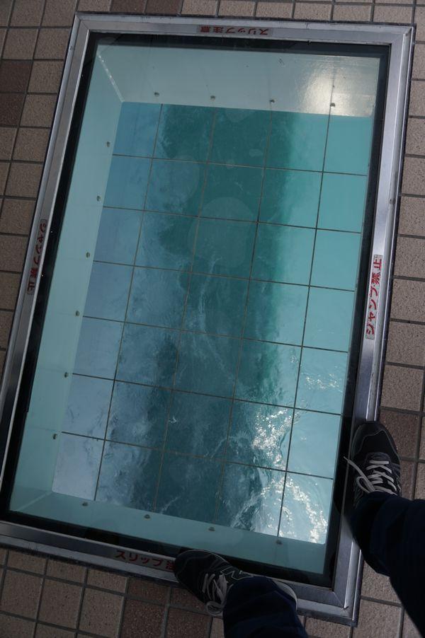 渦の道ガラス床画像