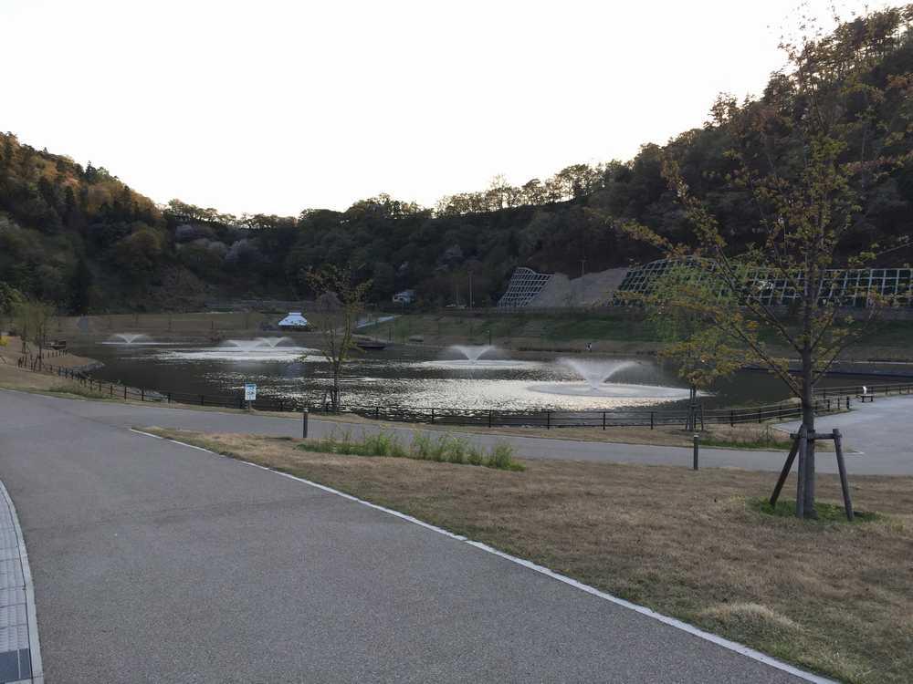 天童公園の池画像